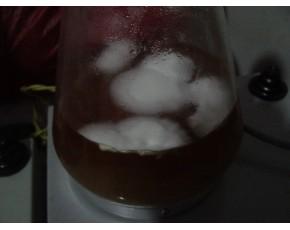 液体菌种生产与应用技术