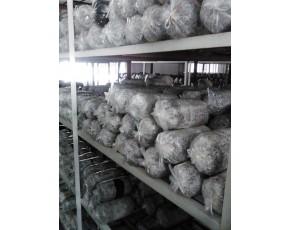 山东临沂供应平菇栽培种