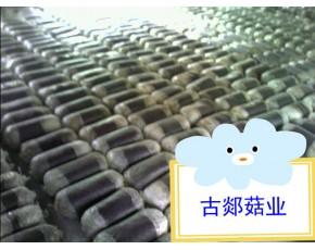 山东临沂供应平菇菌棒