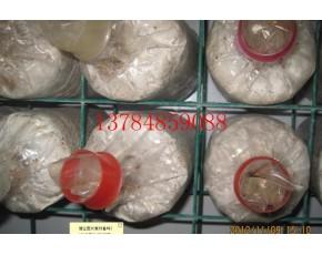 食用菌网格/网架/秀珍菇网格/杏鲍菇网格网架/平菇网格网架