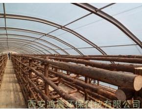 陕西 中国/蘑菇大棚