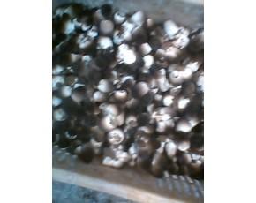 供鲜草菇。干.鲜毛木耳