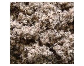 棉籽壳、玉米芯、麦麸