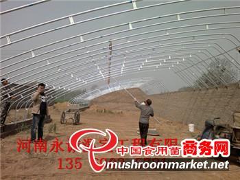 10米暖棚结构图