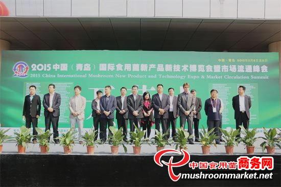 青岛华盛绿能农业科技有限公司副总经理王伟