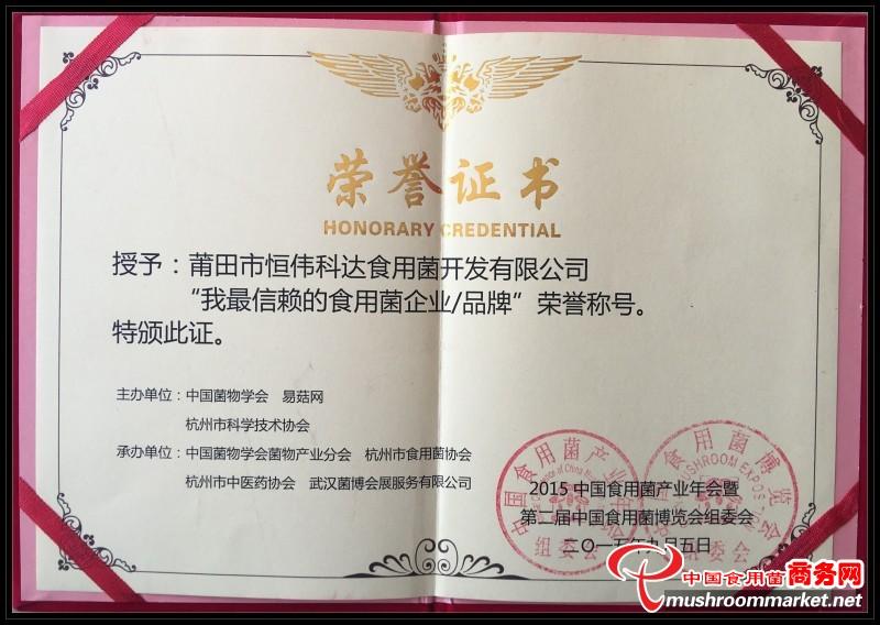 企业品牌荣誉证书