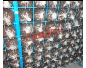 养蘑菇专用网片 出菇网片
