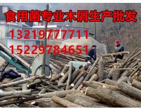 大量批发食用菌专用纯青岗木屑(桦栎木)