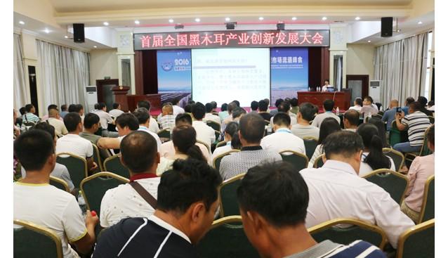 首届全国黑木耳产业创新发展大会 专题研讨会