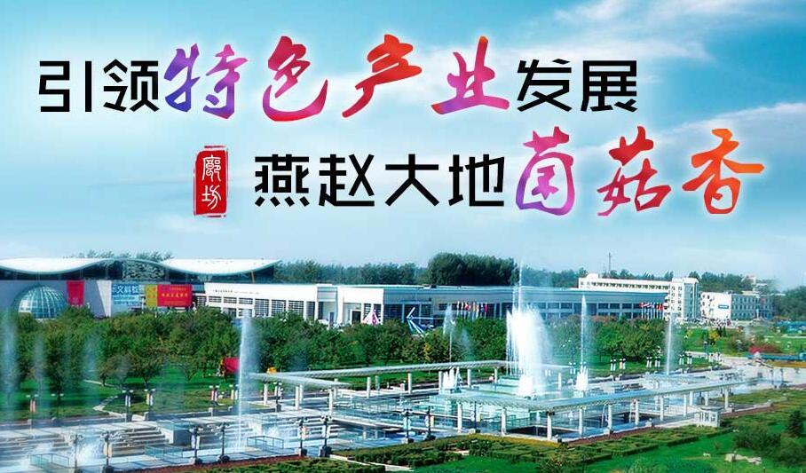 引领特色产业发展,燕赵大地菌菇香
