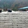 陕西:宁强县菇农利用冬闲时间开展反季节袋料香菇生产