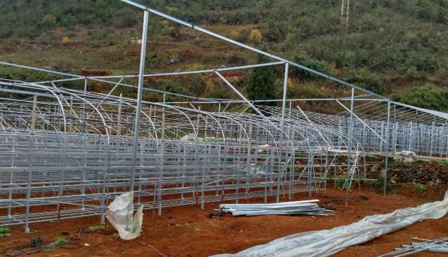 贵州:兴义市汇源森农业公司加快珍稀食用菌基地建设