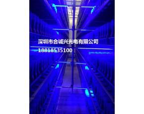 食用菌LED抑制灯