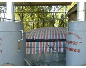 厂家供应平凉庆阳定西陇南临夏甘南香菇灭菌锅炉