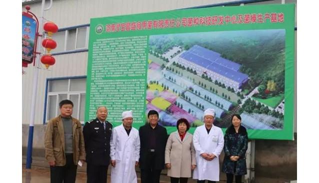 河南:省扶贫办赴灵宝市香菇基地考察观摩