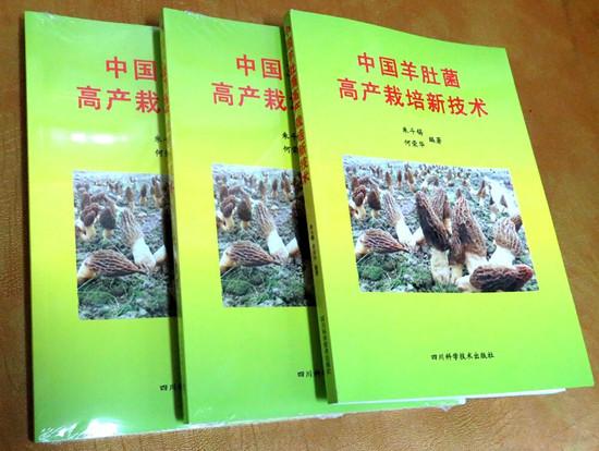 新书《中国羊肚菌高产栽培新技术》现已