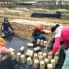 辽宁:辽阳市佳琦食用菌合作社黑木耳技术服务队指导种植技术