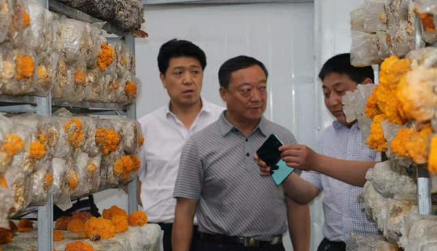 甘肃省工商局个体处处长王耀玉一行参观考察陇南康元生物工程有限公司