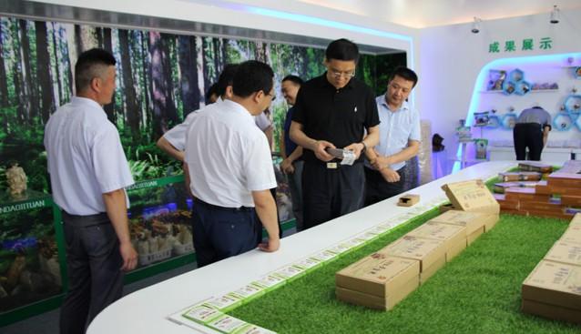 陕西:汉中三道中瑞生态食用菌等产业扶贫项目迎来调研指导