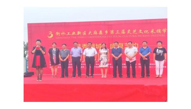 河北:衡水第三届灵芝文化采摘节拉开帷幕