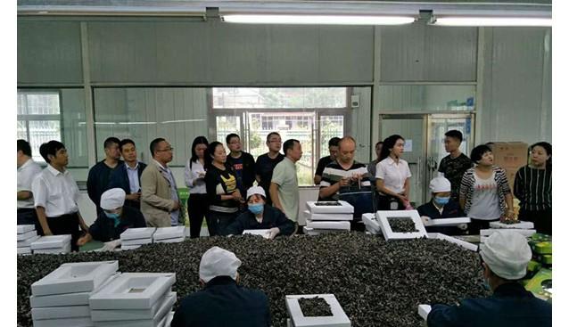甘肃省陇南市食品药品监督管理局深入康县兴源指导培训