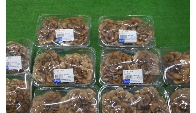 日本市场流通中的小包装食用菌