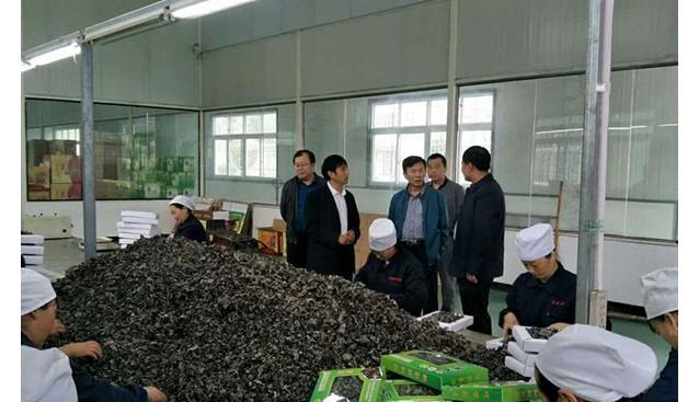 山东:青岛市李沧区商务局领导一行到访甘肃康县兴源公司