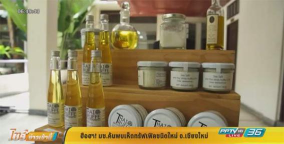 """泰国:""""白色钻石""""白松露每公斤价格达16万泰铢"""