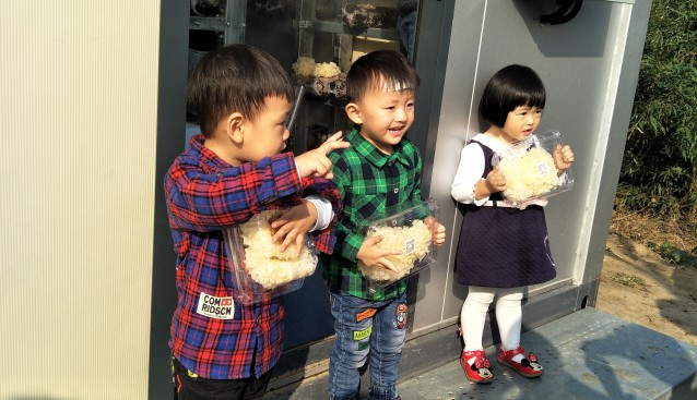 河南:新乡市精农迎来最小蘑菇采摘客