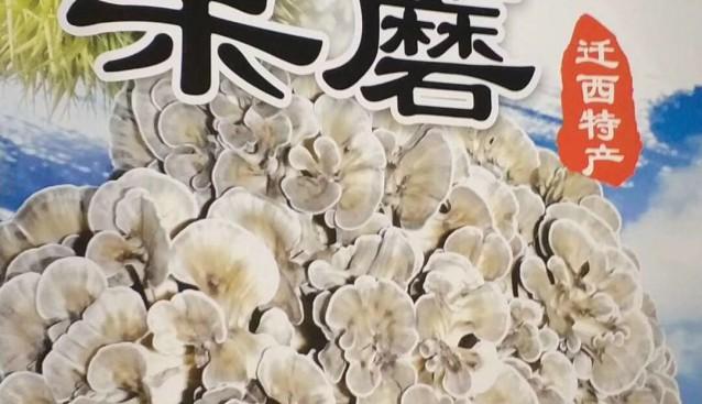 食用菌精彩亮相2017中国(廊坊)国际有机食品博览会