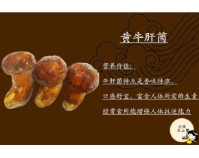 云南野生jun 野生食yongjun 冻pin牛ganjun 黄牛ganjun