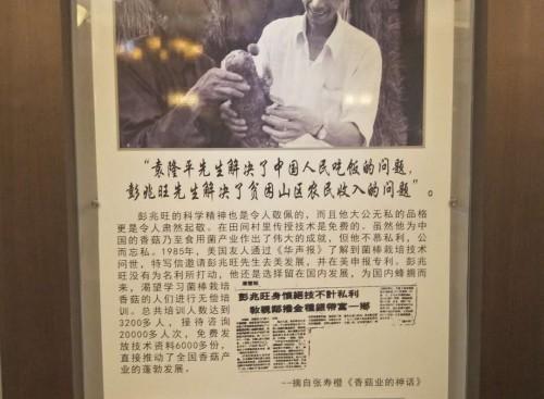 山东惠民齐发一行赴上海彭世菌业考察