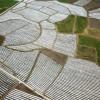 贵州:剑河县运用覆膜方式种植食用菌