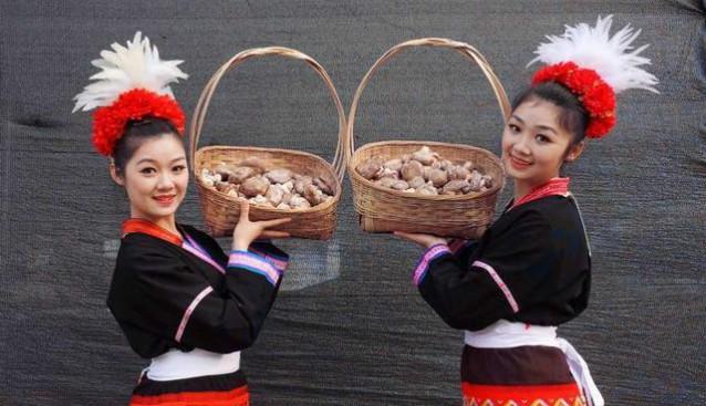 广东:连南县小蘑菇带来大收益