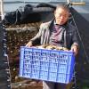 四川:南充市羊肚菌产业助力精准扶贫
