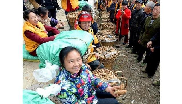 重庆:云阳400名麻农学习天麻种植技术