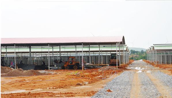 江华:食用菌产业园初具规模