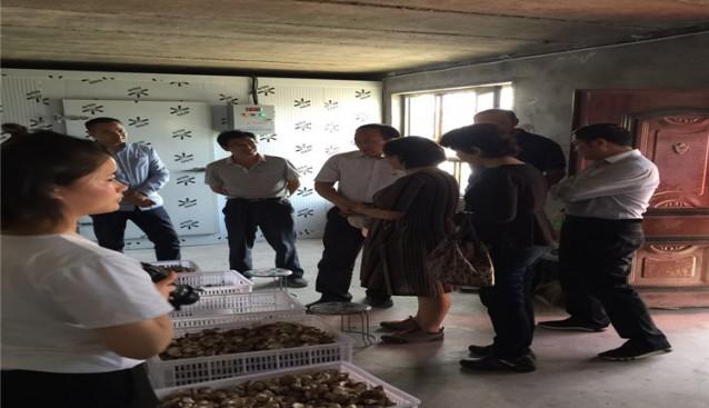 宁夏:科技厅副厅长刘长青一行莅临良田镇食用菌产业园调研