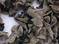 木耳贮藏期虫害防治方法
