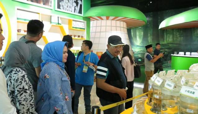 印度尼西亚专业集团党干部一行参观调研龙州北部湾公司