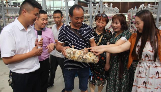湖北:裕国菇业出口创汇产销旺 受到宜昌市游客的广泛关注