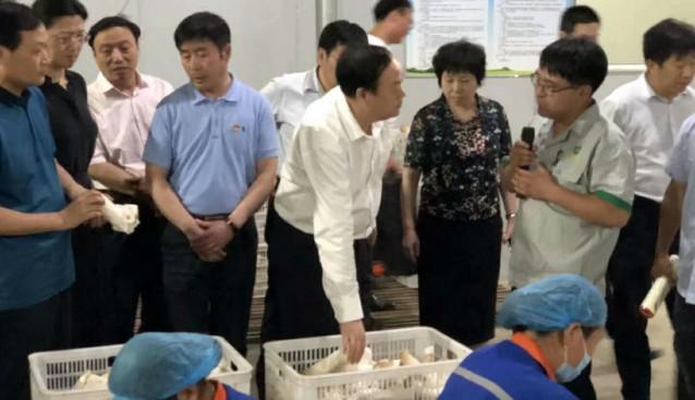 河南:濮阳市宋殿宇市长一行莅临天耕农业指导工作