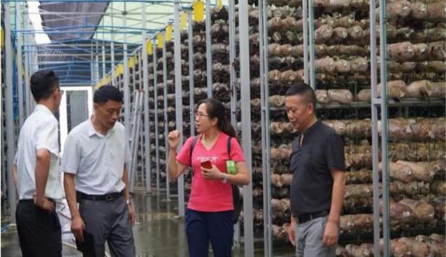 四川:农科院专家和什邡市农业局领导莅临昊阳农业调研
