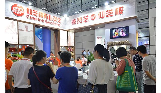 福建:福州第十六届中国·海峡项目成果交易会上仙芝楼有机灵芝获得高度评价