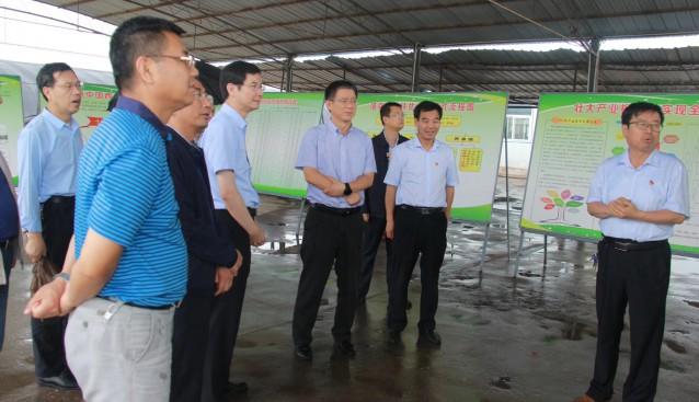 陕西:榆林市委常委马洪朝一行赴陇县调研考察