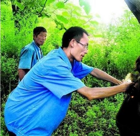 王继成:80后大学生村官,带领村民种食用菌致富