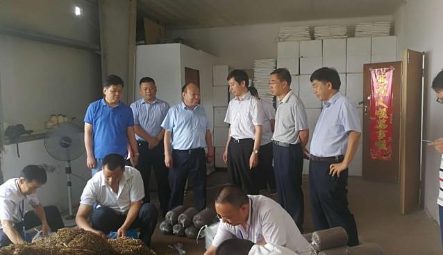 安徽:合肥市副市长彭庆恩一行调研安徽天都灵芝制品公司残疾人辅助性就业工作