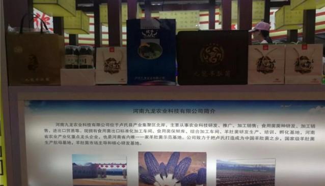 河南:九龙公司参加第二十一届中国农产品加工业投资贸易洽谈会