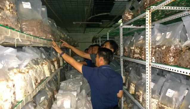 北京:中盛永基与北航大学联手将拟在中阳建设香菇生产新技术示范基地