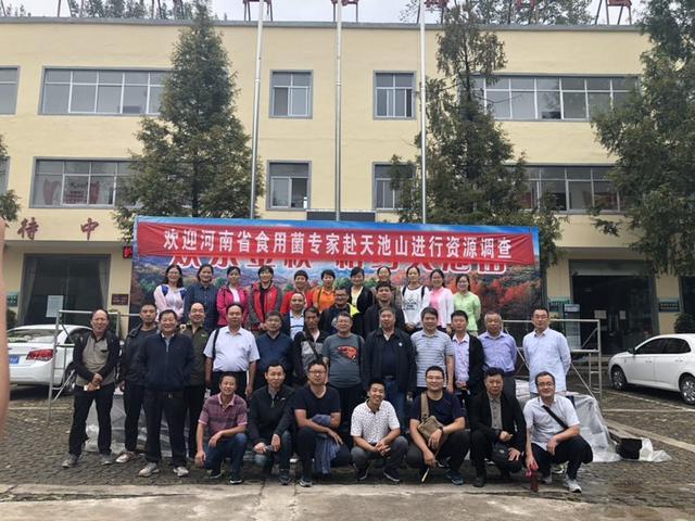 河南:省食用菌产业技术体系野生资源调